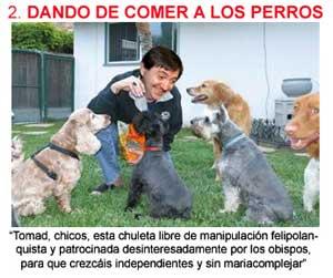 Dando-de-comer-a-los-perros.jpg