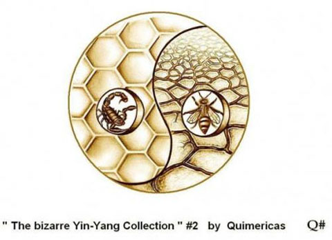 the_bizarre_yin_yang_collection_102575